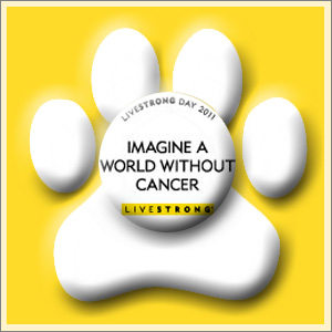 LiveSTRONG PAWS