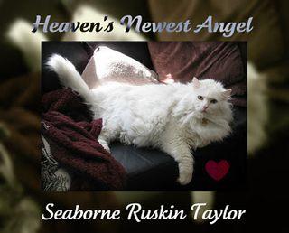 RIP-SeaborneRuskinTaylor-2011-11-23