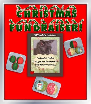 WWchristmas fundraiser banner