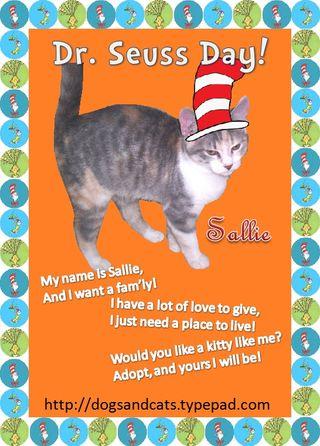 Seuss day Sallie