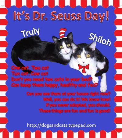 Seuss day Shiloh Truly