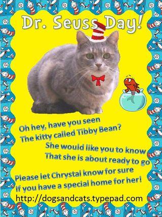 Seuss day Tibby Bean