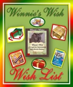 Winnie's Wish Wish list banner Christmas