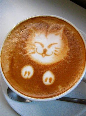 Cat with your coffee 2