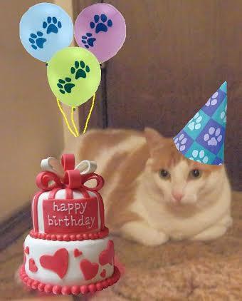 Percy valentine birthday