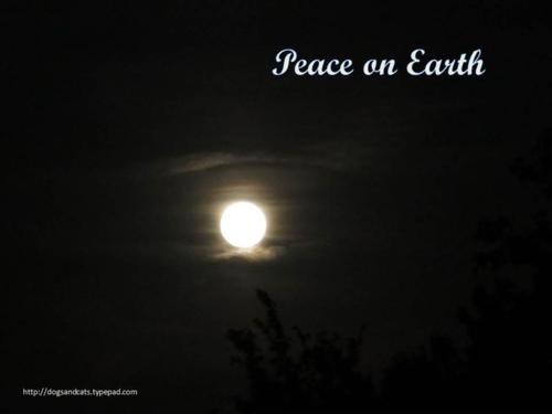 Peace on earth7