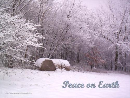 Peace on earth3
