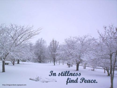 Peace on earth4