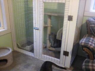 Pan in enclosure
