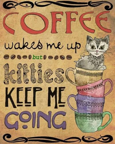 Coffee - kitties