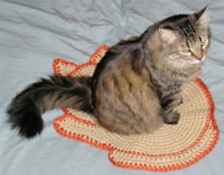 Andrea cat mat with Cashmere