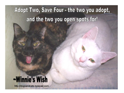 Adopt Two