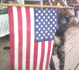 Patriotic analeigh