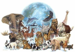 Earth animals2