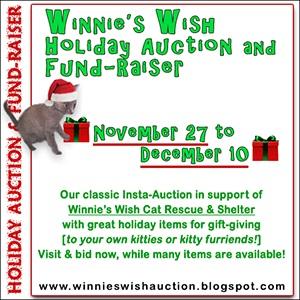 WW christmas insta auction 2017