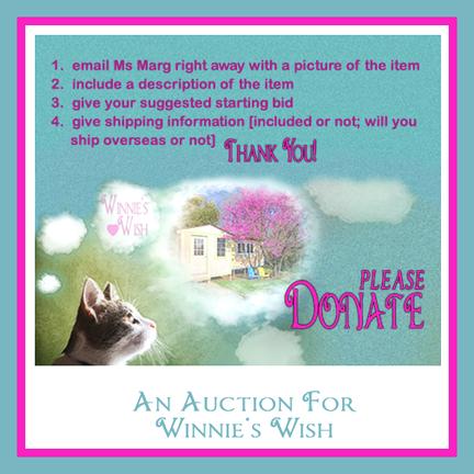 Auction please donate jpg