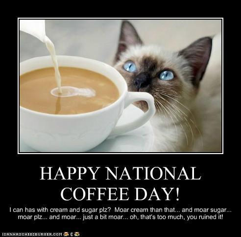 Coffee - nat'l coffee day with cat