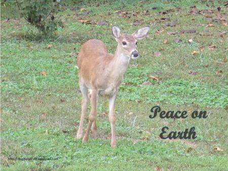 Peace on earth8