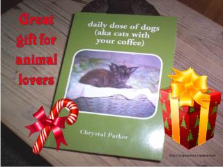 Book christmas2